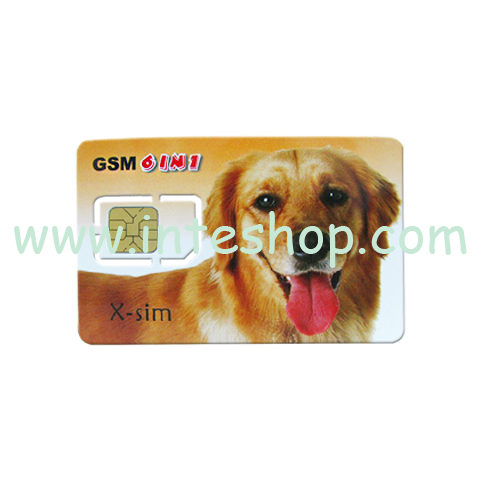 Picture of Blank GSM SIM Card for Backup
