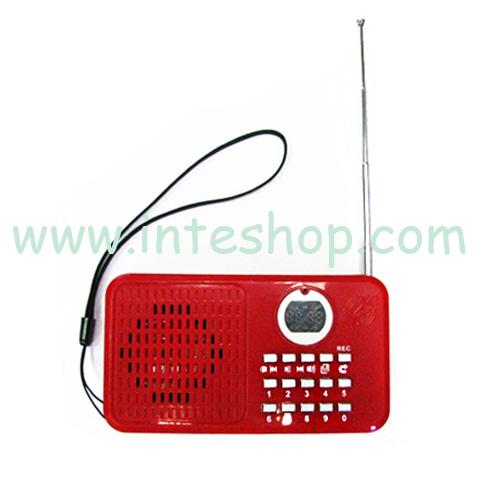 Picture of Bright Portable Multifunctional Speaker / FM Radio